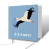 It's A Boy! Stork Delivery New Baby Greetings Card