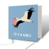 It's A Girl! Stork Delivery New Baby Greetings Card