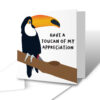 Have A Toucan Of My Appreciation Thank You Greetings Card