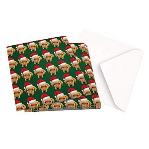 Christmas Card Pack of 10×1 Design ORIGINAL PHOTOGRAPH FOX RED LABRADOR PATTERN – Square Greeting Card X10